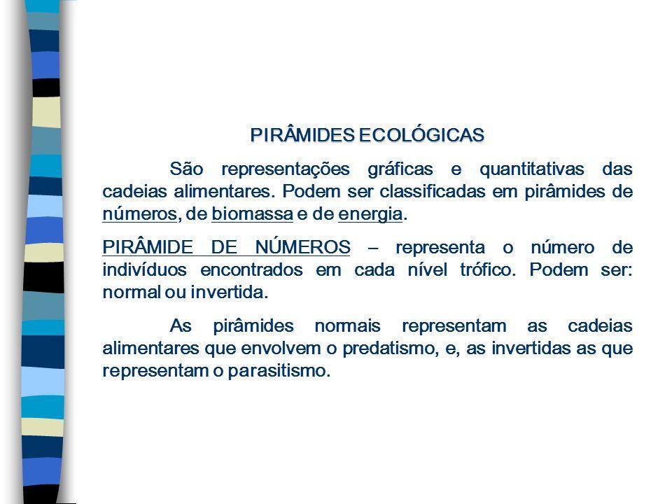 PIRÂMIDES ECOLÓGICAS São representações gráficas e quantitativas das cadeias alimentares.