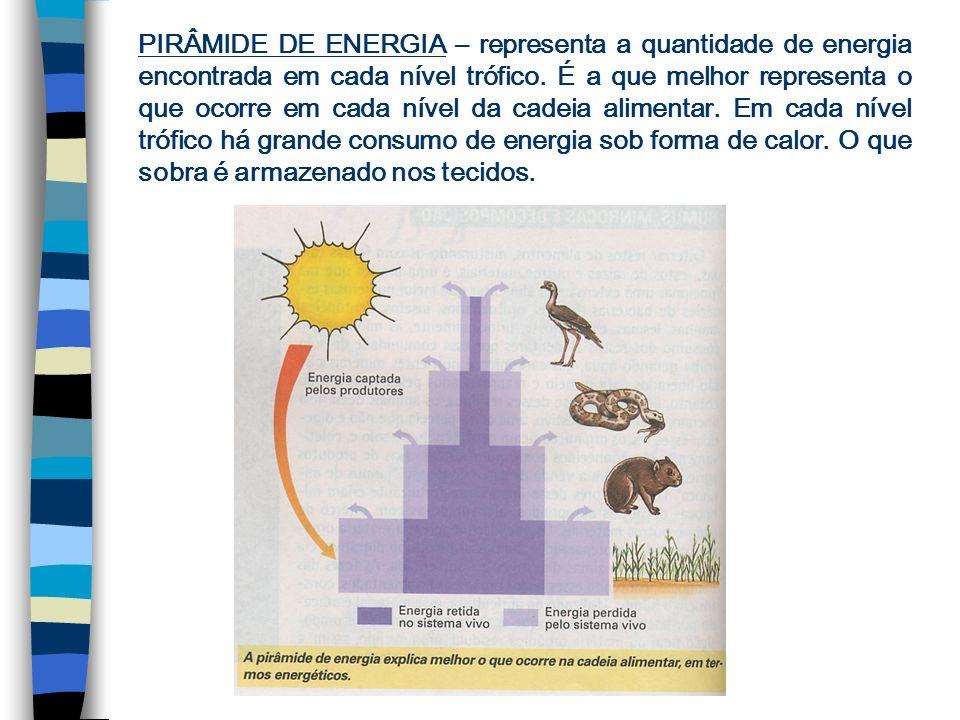 PIRÂMIDE DE BIOMASSA – representa a quantidade de massa (matéria orgânica) encontrada em cada nível trófico. Também pode ser normal e invertida.