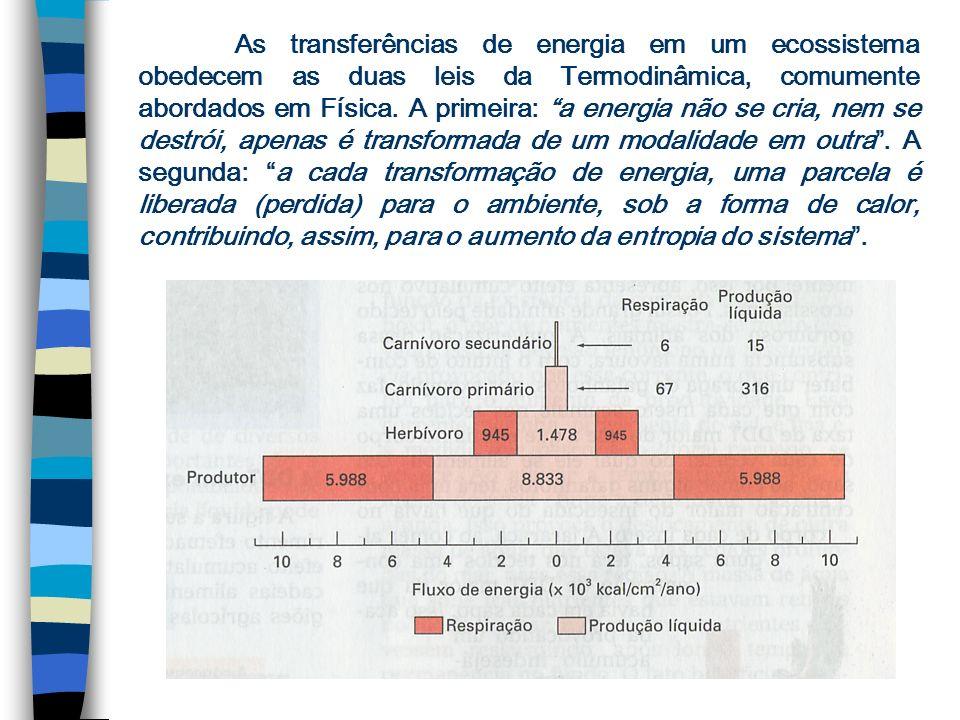 As transferências de energia em um ecossistema obedecem as duas leis da Termodinâmica, comumente abordados em Física.