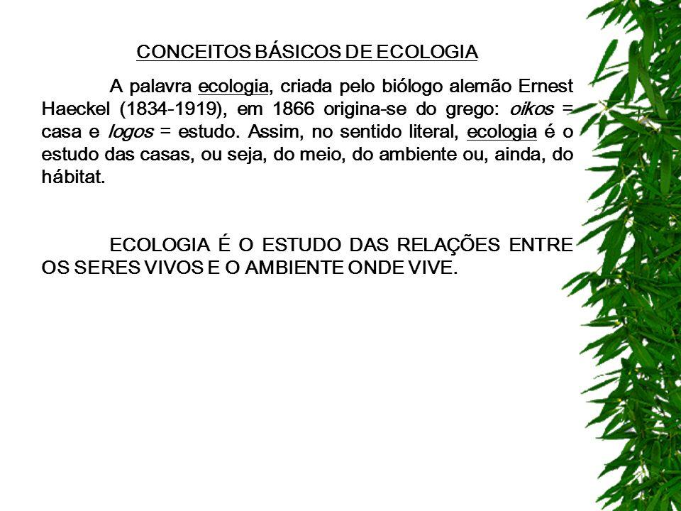 CONCEITOS BÁSICOS DE ECOLOGIA A palavra ecologia, criada pelo biólogo alemão Ernest Haeckel (1834-1919), em 1866 origina-se do grego: oikos = casa e logos = estudo.