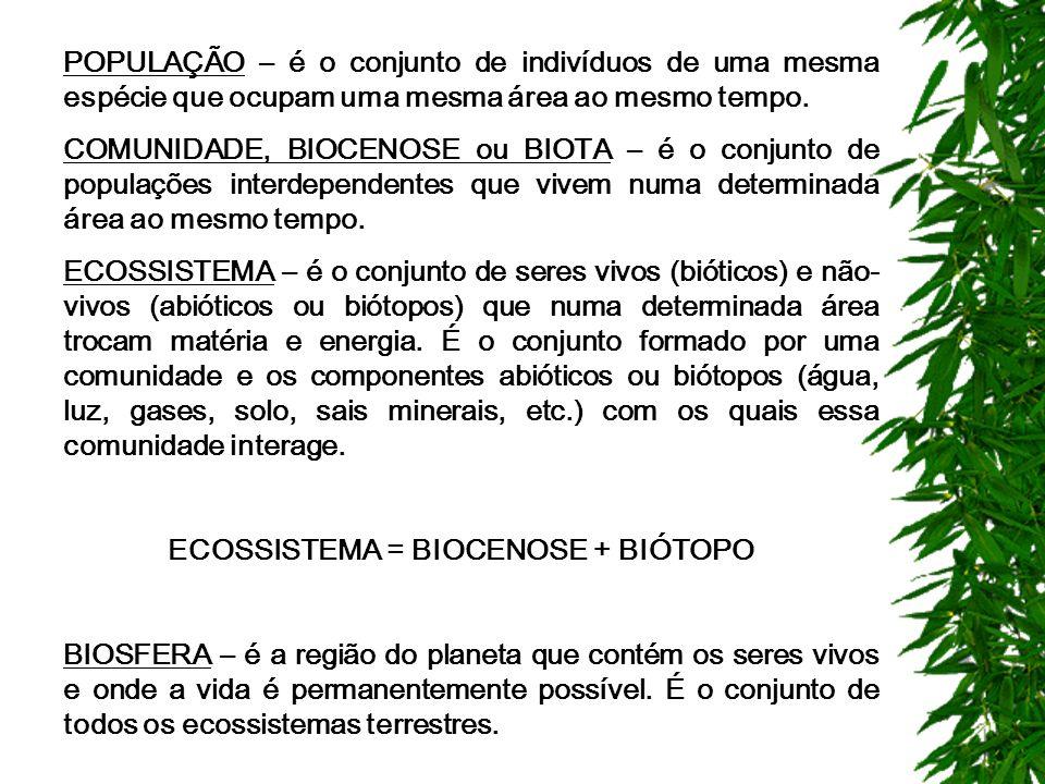 CONCEITOS BÁSICOS DE ECOLOGIA A palavra ecologia, criada pelo biólogo alemão Ernest Haeckel (1834-1919), em 1866 origina-se do grego: oikos = casa e l