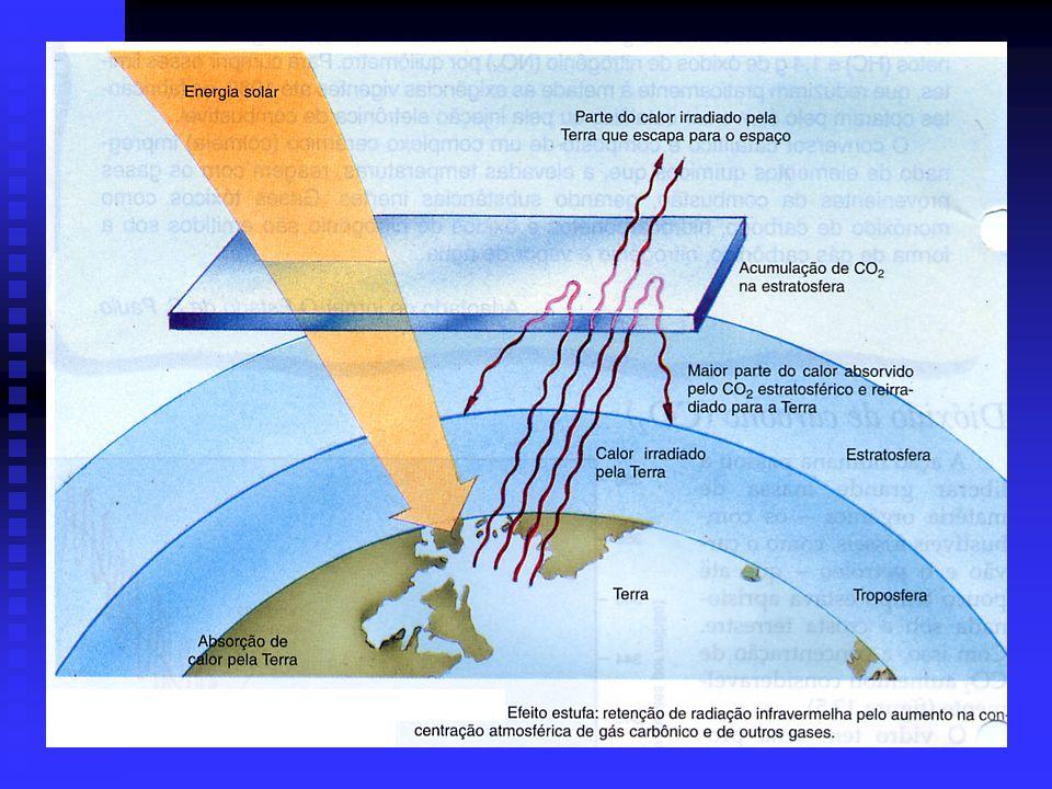 Dióxido de carbono (CO 2 ) A quantidade de CO 2 na atmosfera tem aumentado significativamente nas últimas décadas, decorrente, principalmente, da quei