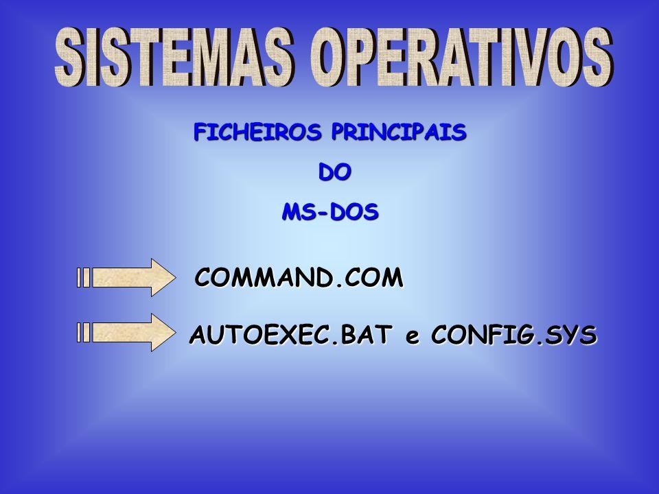 COMMAND.COM Permite carregar o MS-DOS e fica apto a executar os comandos internos.