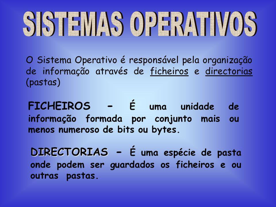 FORMAT (Comando externo) FORMATAÇÃO DE DISQUETES Permite organizar internamente as disquetes novas.