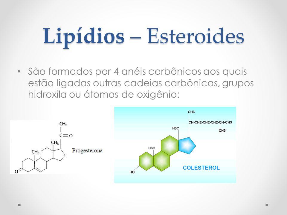 Lipídios – Esteroides Colesterol: a ingestão exagerada pode causar danos à saúde; componente importante das membranas celulares de animais; as células utilizam o colesterol produzido pelo fígado ou vindos de alimentos de origem animal para fabricação de membranas celulares e hormônios esteroides (Ex: testosterona e estrógeno);