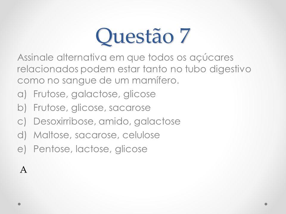 Questão 8 O intestino delgado absorve, após a digestão, os alimentos que ingerimos.