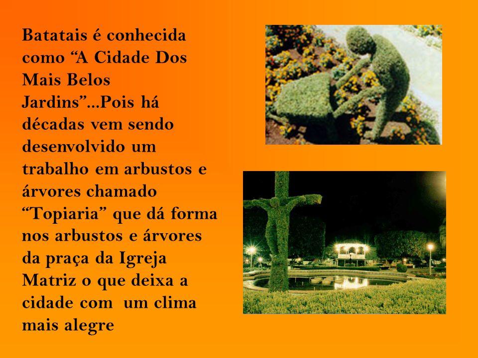 Batatais é conhecida como A Cidade Dos Mais Belos Jardins...Pois há décadas vem sendo desenvolvido um trabalho em arbustos e árvores chamado Topiaria
