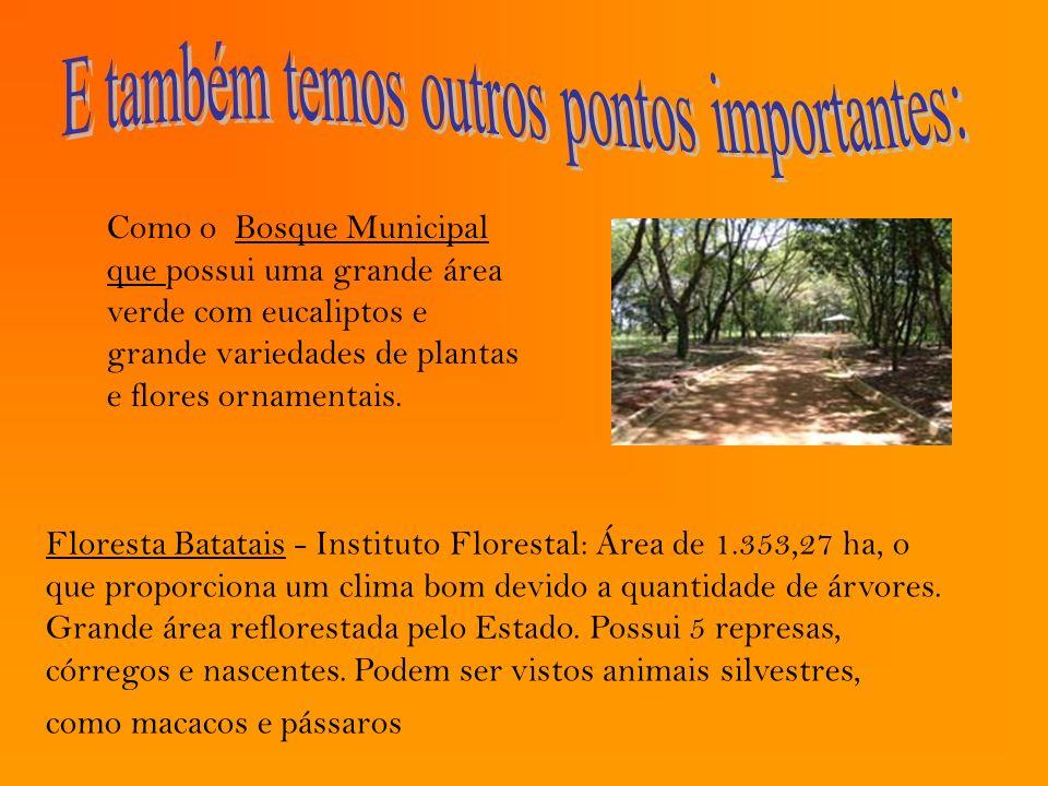 Floresta Batatais - Instituto Florestal: Área de 1.353,27 ha, o que proporciona um clima bom devido a quantidade de árvores. Grande área reflorestada