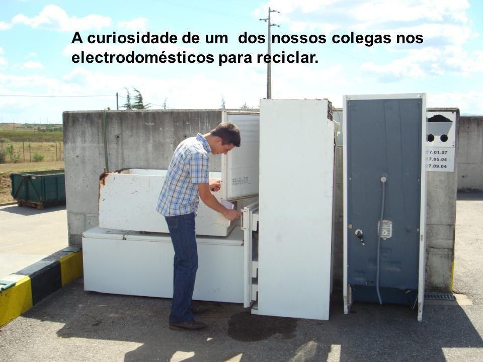 A curiosidade de um dos nossos colegas nos electrodomésticos para reciclar.