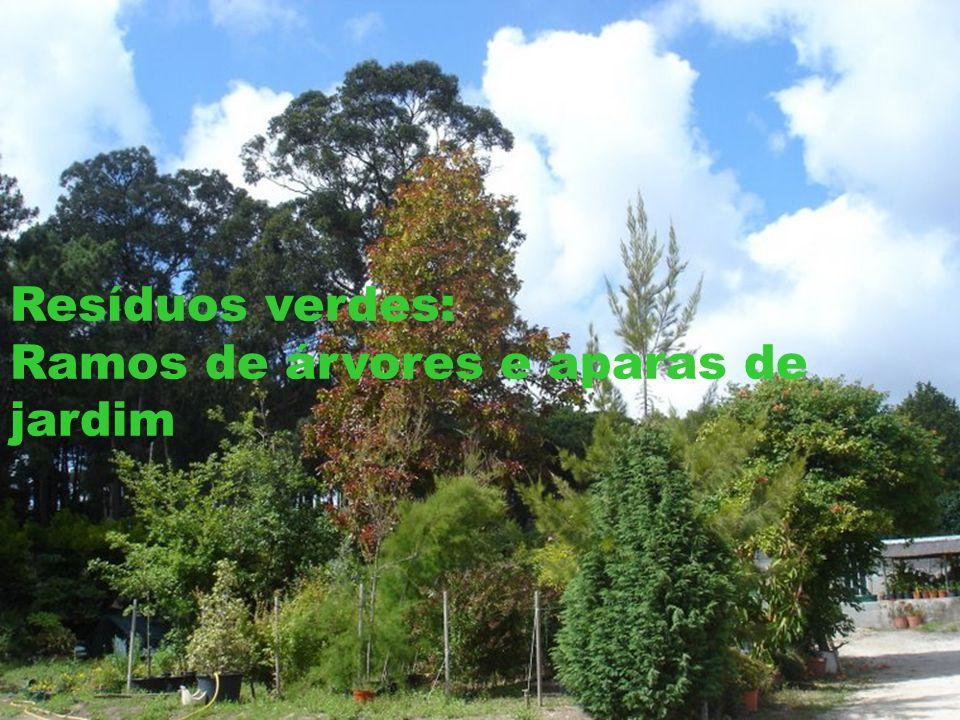 Resíduos verdes: Ramos de árvores e aparas de jardim