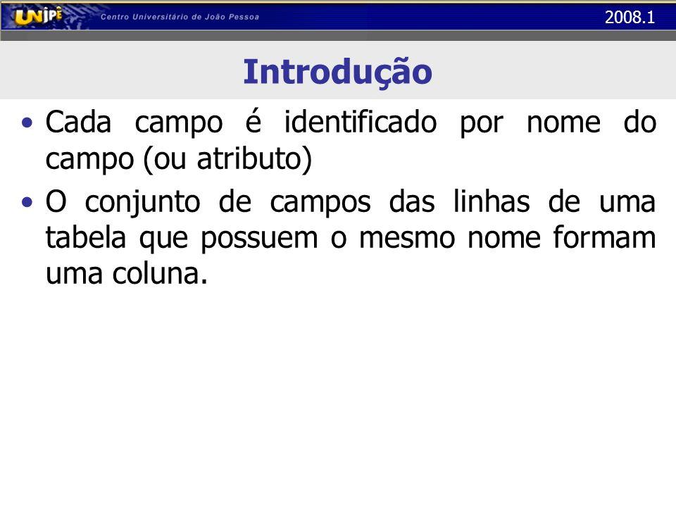 2008.1 Introdução Cada campo é identificado por nome do campo (ou atributo) O conjunto de campos das linhas de uma tabela que possuem o mesmo nome for