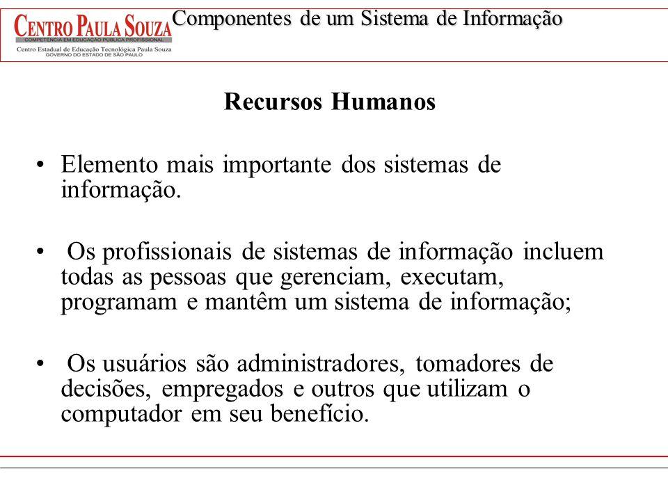 Recursos Humanos Elemento mais importante dos sistemas de informação. Os profissionais de sistemas de informação incluem todas as pessoas que gerencia