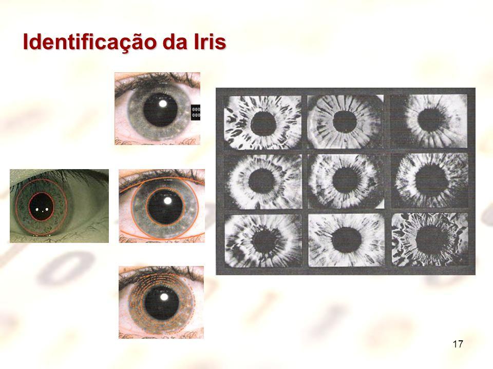 17 Identificação da Iris