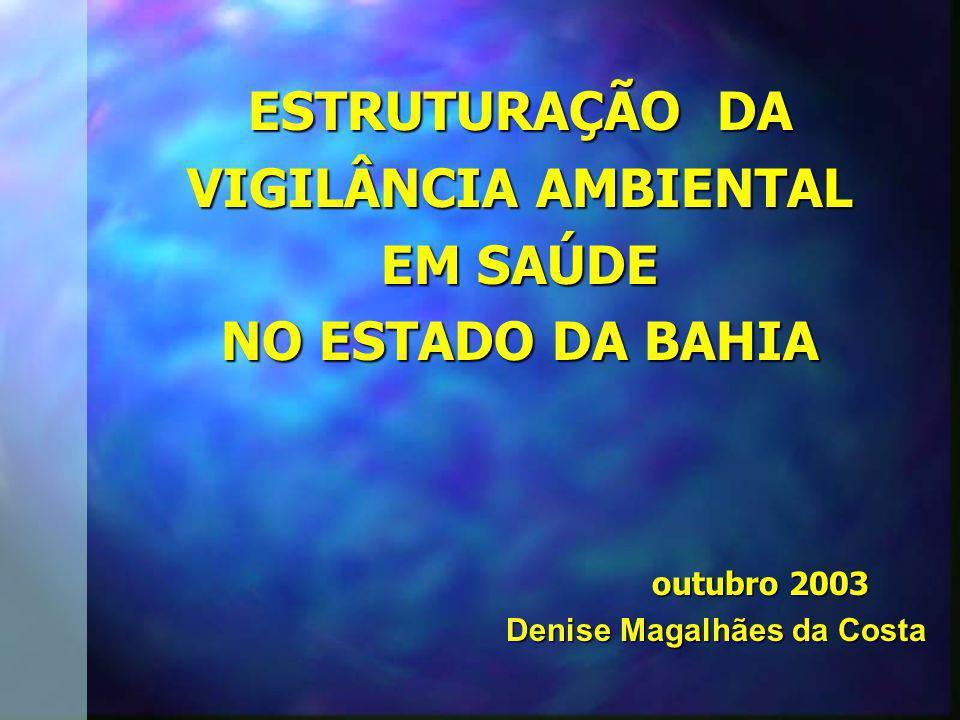 ESTRUTURAÇÃO DA VIGILÂNCIA AMBIENTAL EM SAÚDE NO ESTADO DA BAHIA outubro 2003 Denise Magalhães da Costa