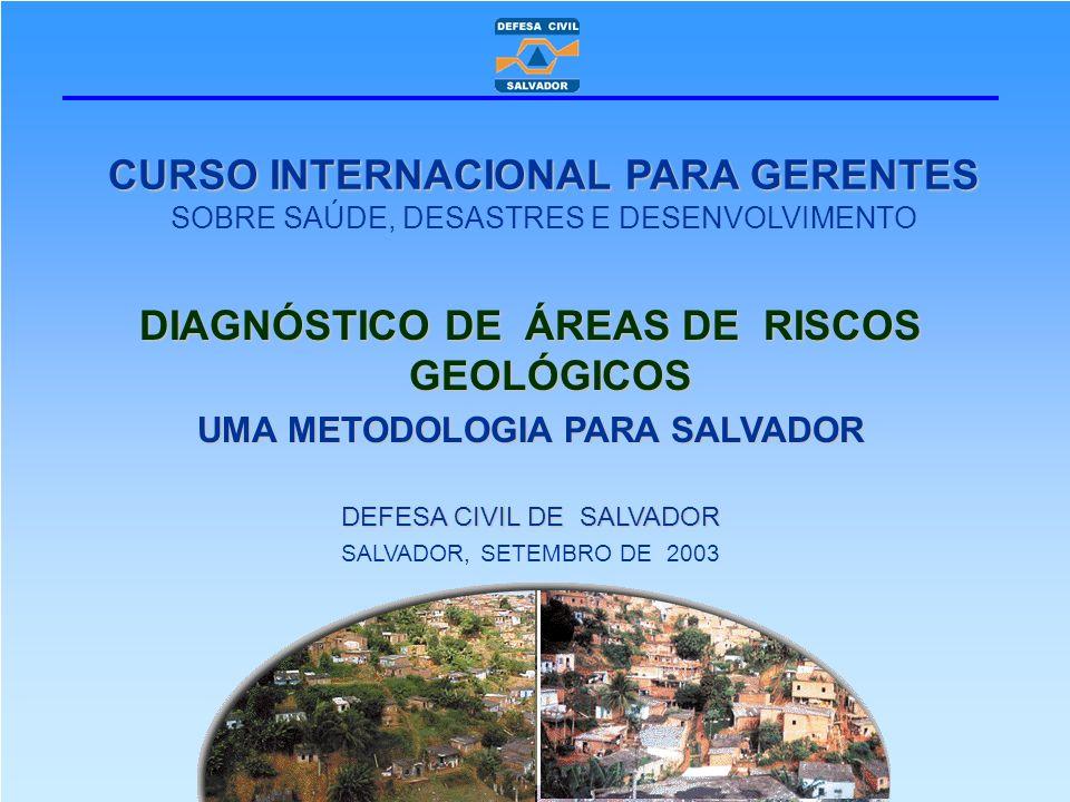 CURSO INTERNACIONAL PARA GERENTES CURSO INTERNACIONAL PARA GERENTES SOBRE SAÚDE, DESASTRES E DESENVOLVIMENTO DIAGNÓSTICO DE ÁREAS DE RISCOS GEOLÓGICOS