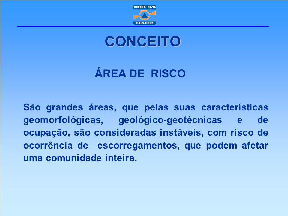 ÁREA DE RISCO São grandes áreas, que pelas suas características geomorfológicas, geológico-geotécnicas e de ocupação, são consideradas instáveis, com