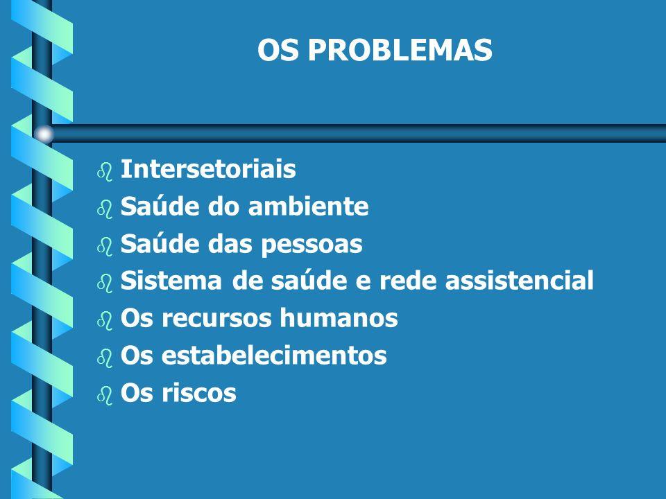 OS PROBLEMAS b b Intersetoriais b b Saúde do ambiente b b Saúde das pessoas b b Sistema de saúde e rede assistencial b b Os recursos humanos b b Os estabelecimentos b b Os riscos