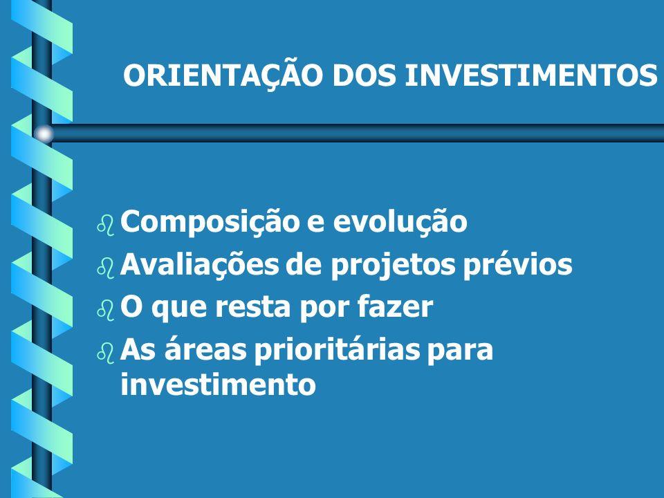 ORIENTAÇÃO DOS INVESTIMENTOS b b Composição e evolução b b Avaliações de projetos prévios b b O que resta por fazer b b As áreas prioritárias para investimento