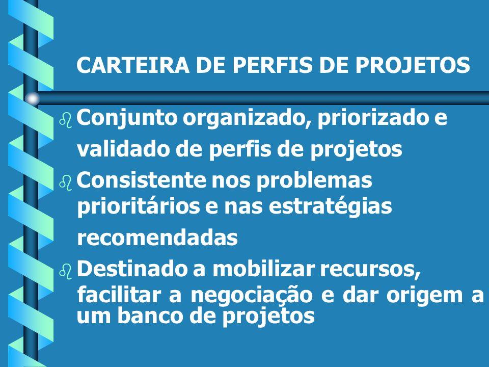CARTEIRA DE PERFIS DE PROJETOS b b Conjunto organizado, priorizado e validado de perfis de projetos b b Consistente nos problemas prioritários e nas estratégias recomendadas b b Destinado a mobilizar recursos, facilitar a negociação e dar origem a um banco de projetos