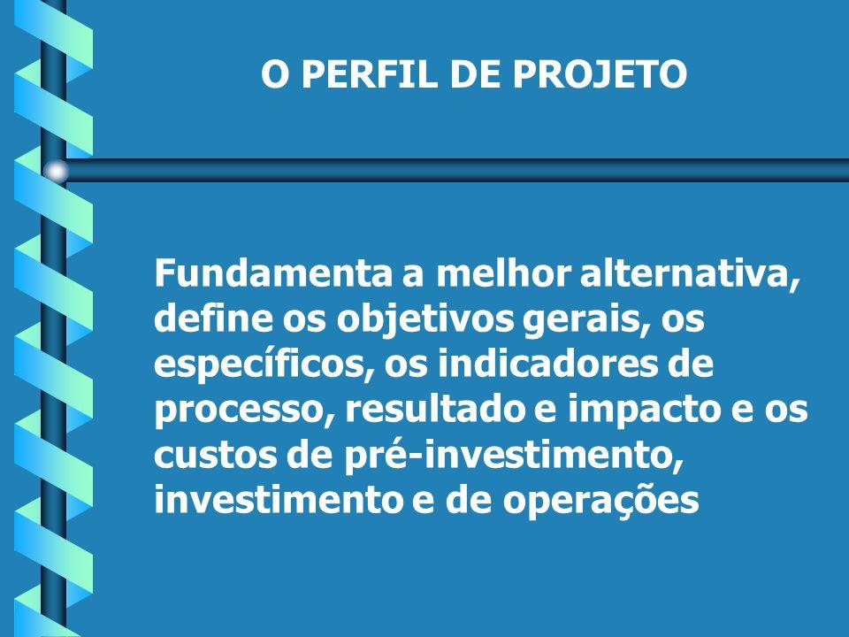 O PERFIL DE PROJETO Fundamenta a melhor alternativa, define os objetivos gerais, os específicos, os indicadores de processo, resultado e impacto e os custos de pré-investimento, investimento e de operações