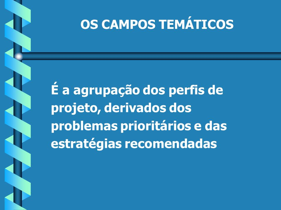 OS CAMPOS TEMÁTICOS É a agrupação dos perfis de projeto, derivados dos problemas prioritários e das estratégias recomendadas