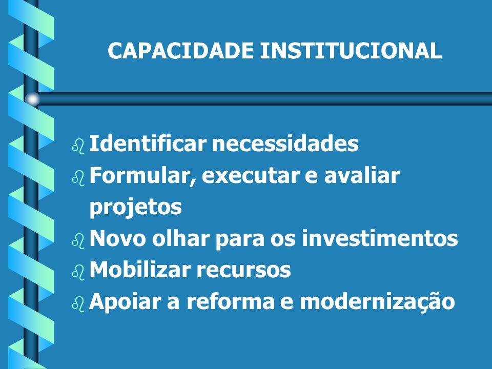CAPACIDADE INSTITUCIONAL b b Identificar necessidades b b Formular, executar e avaliar projetos b b Novo olhar para os investimentos b b Mobilizar recursos b b Apoiar a reforma e modernização