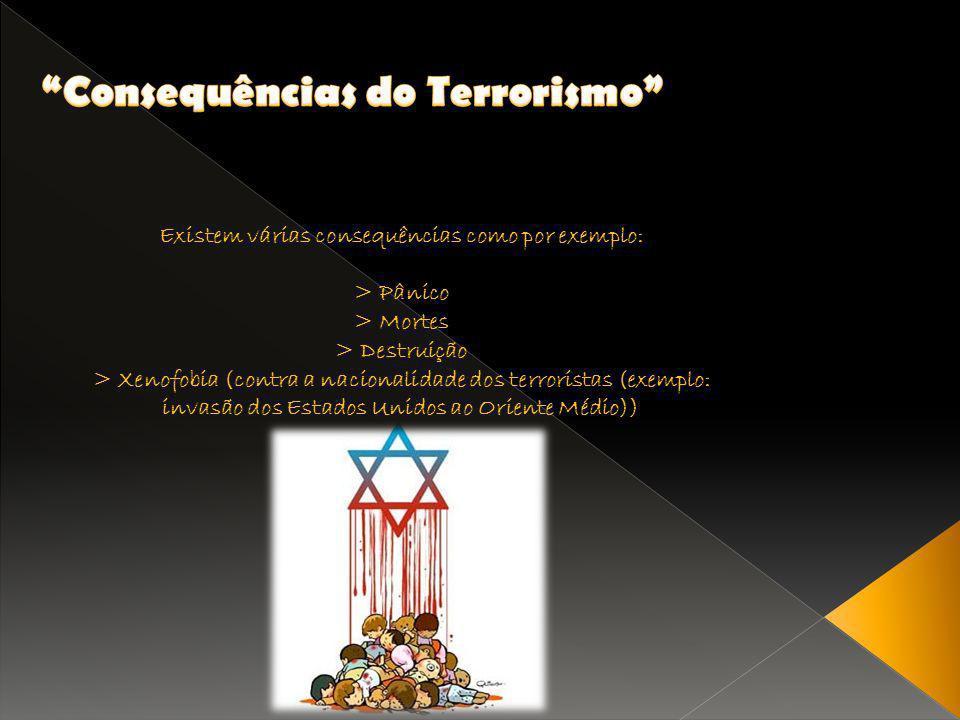 Existem várias consequências como por exemplo: > Pânico > Mortes > Destruição > Xenofobia (contra a nacionalidade dos terroristas (exemplo: invasão do