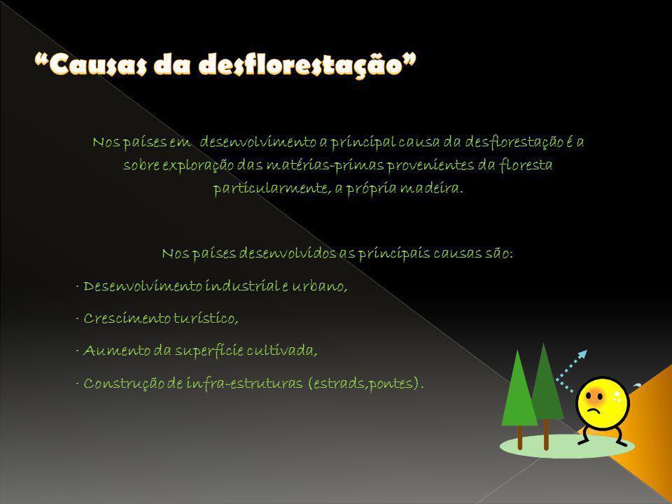 Nos países em desenvolvimento a principal causa da desflorestação é a sobre exploração das matérias-primas provenientes da floresta particularmente, a