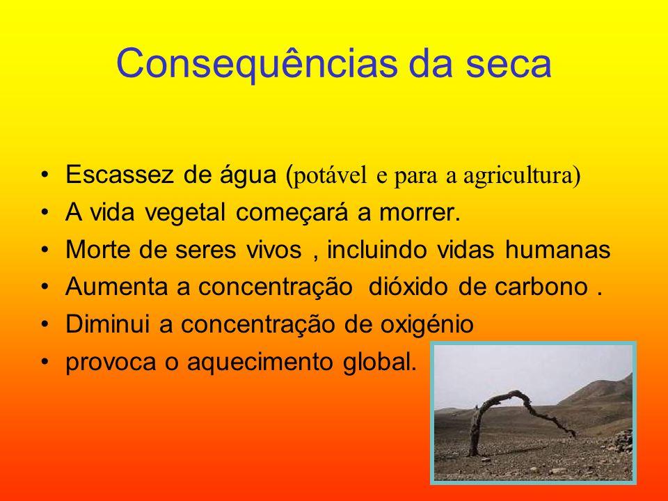 Consequências da seca Escassez de água (potável e para a agricultura) A vida vegetal começará a morrer. Morte de seres vivos, incluindo vidas humanas