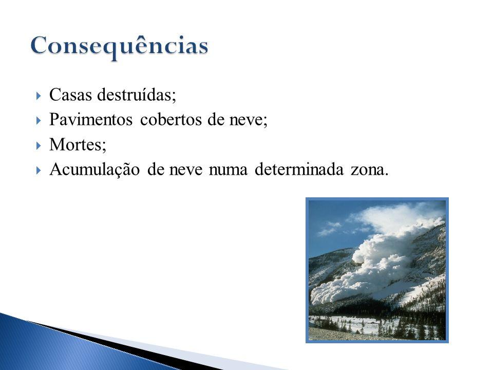 Casas destruídas; Pavimentos cobertos de neve; Mortes; Acumulação de neve numa determinada zona.