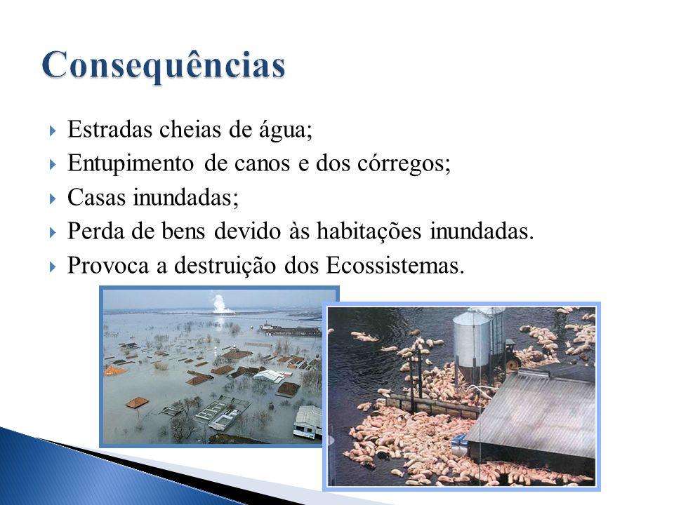 Estradas cheias de água; Entupimento de canos e dos córregos; Casas inundadas; Perda de bens devido às habitações inundadas. Provoca a destruição dos