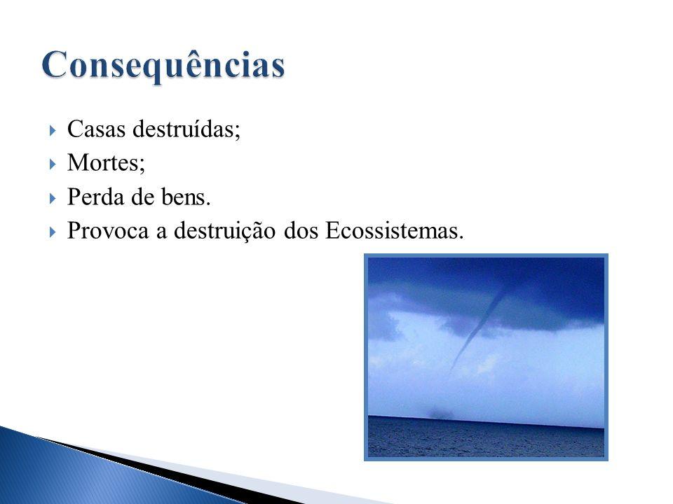 Casas destruídas; Mortes; Perda de bens. Provoca a destruição dos Ecossistemas.