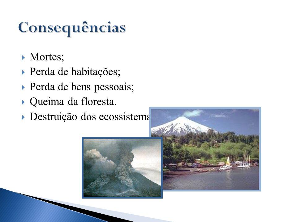 Mortes; Perda de habitações; Perda de bens pessoais; Queima da floresta. Destruição dos ecossistemas