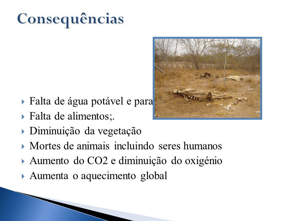 Falta de água potável e para a agricultura Falta de alimentos;. Diminuição da vegetação Mortes de animais incluindo seres humanos Aumento do CO2 e dim