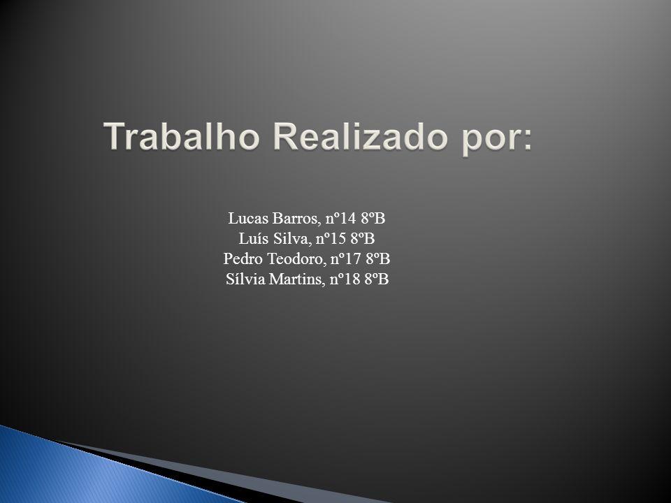 Lucas Barros, nº14 8ºB Luís Silva, nº15 8ºB Pedro Teodoro, nº17 8ºB Sílvia Martins, nº18 8ºB