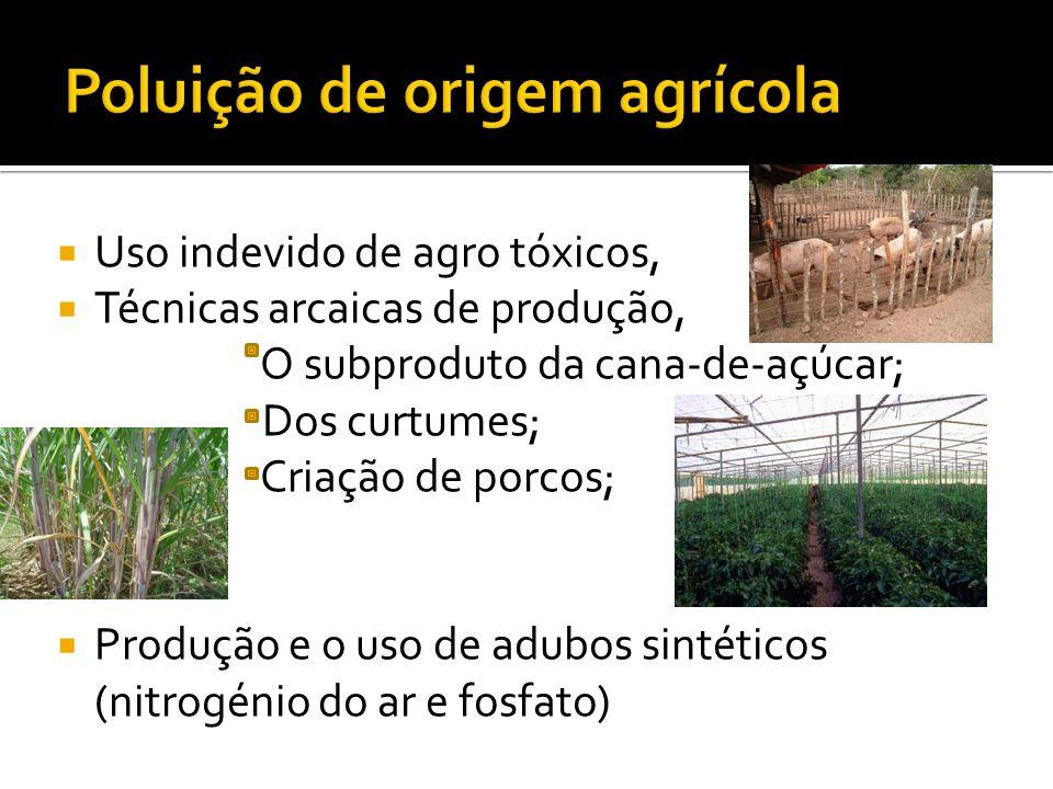 Uso indevido de agro tóxicos, Técnicas arcaicas de produção, O subproduto da cana-de-açúcar; Dos curtumes; Criação de porcos; Produção e o uso de adub