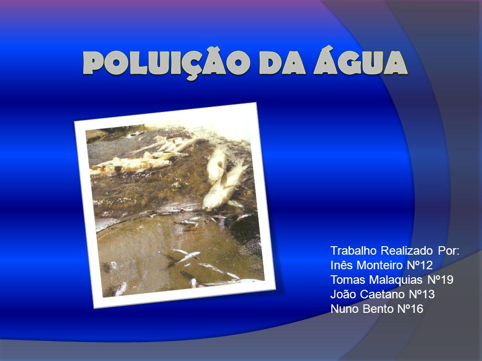 Trabalho Realizado Por: Inês Monteiro Nº12 Tomas Malaquias Nº19 João Caetano Nº13 Nuno Bento Nº16