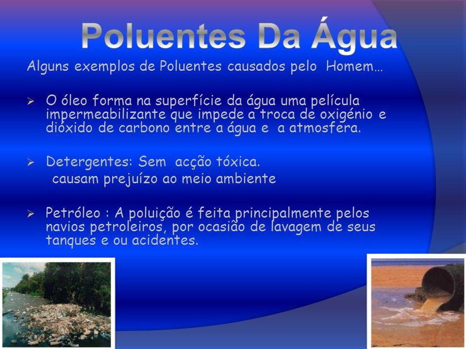 Alguns exemplos de Poluentes causados pelo Homem… O óleo forma na superfície da água uma película impermeabilizante que impede a troca de oxigénio e d