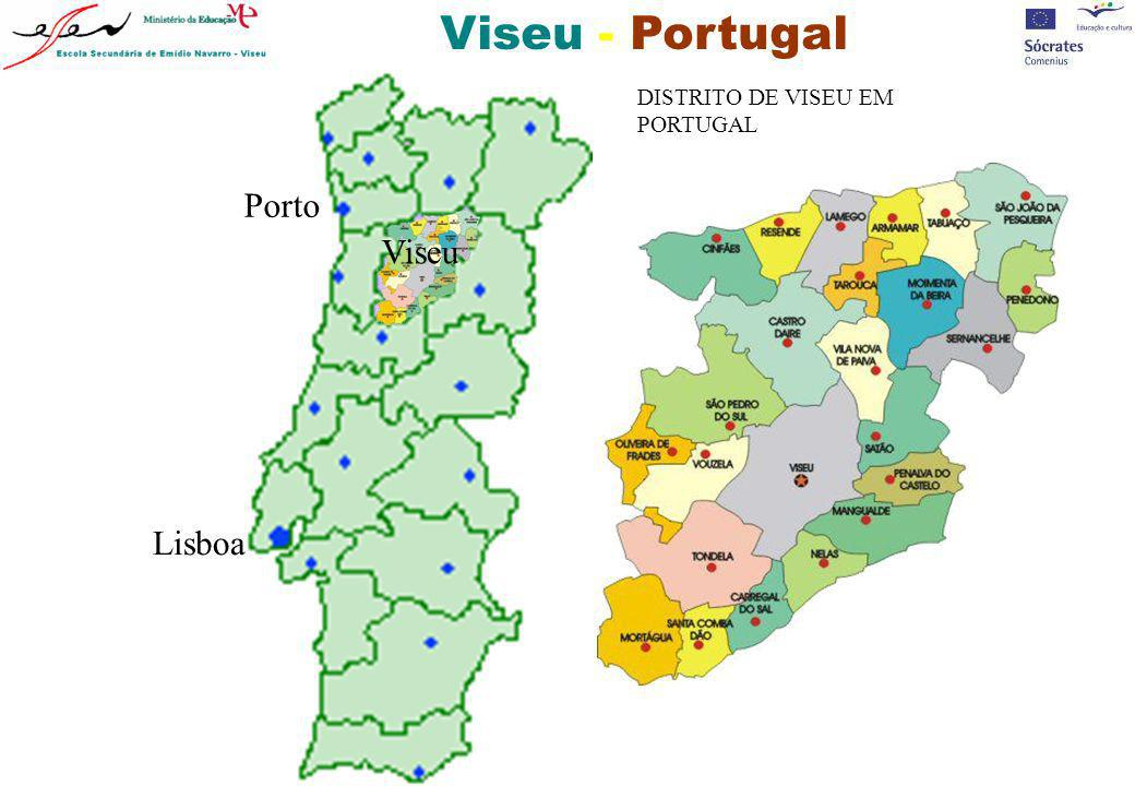 Viseu - Portugal Porto Viseu Lisboa DISTRITO DE VISEU EM PORTUGAL