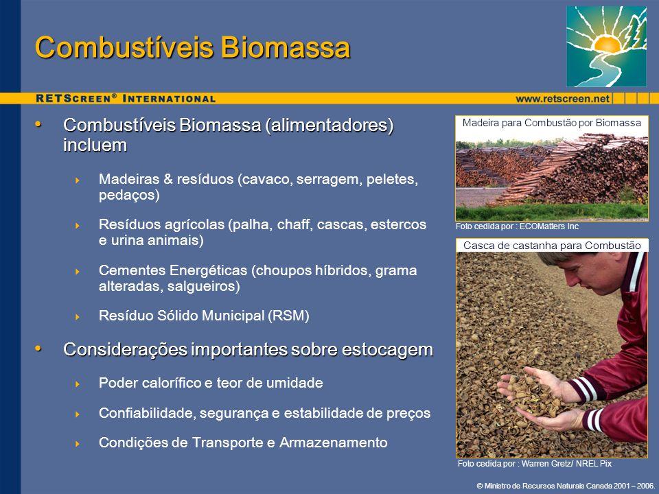 © Ministro de Recursos Naturais Canada 2001 – 2006. Combustíveis Biomassa (alimentadores) incluem Combustíveis Biomassa (alimentadores) incluem Madeir