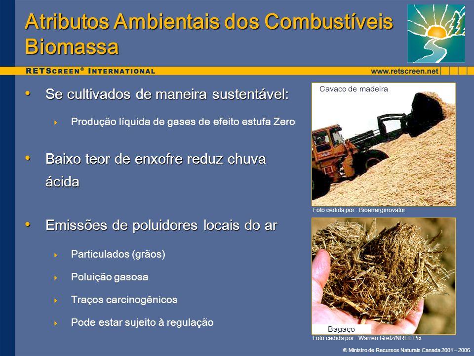 © Ministro de Recursos Naturais Canada 2001 – 2006. Se cultivados de maneira sustentável: Se cultivados de maneira sustentável: Produção líquida de ga