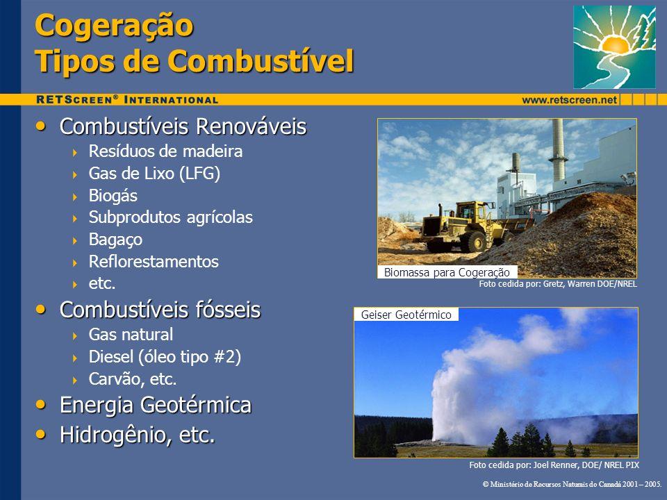 Cogeração Tipos de Combustível Foto cedida por: Joel Renner, DOE/ NREL PIX Geiser Geotérmico Biomassa para Cogeração Combustíveis Renováveis Combustív