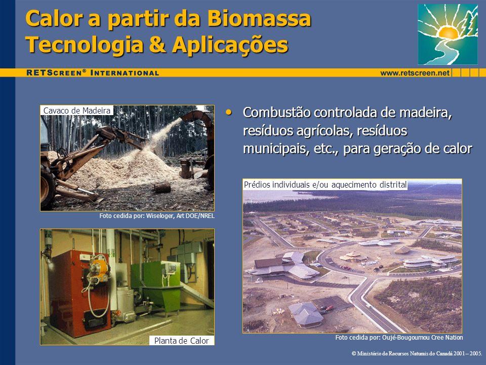 Calor a partir da Biomassa Tecnologia & Aplicações Cavaco de Madeira Planta de Calor Prédios individuais e/ou aquecimento distrital Foto cedida por: W