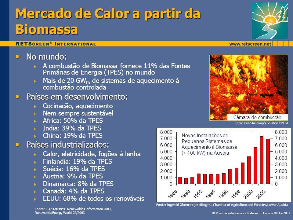No mundo: No mundo: A combustão de Biomassa fornece 11% das Fontes Primárias de Energia (TPES) no mundo Mais de 20 GW th de sistemas de aquecimento à