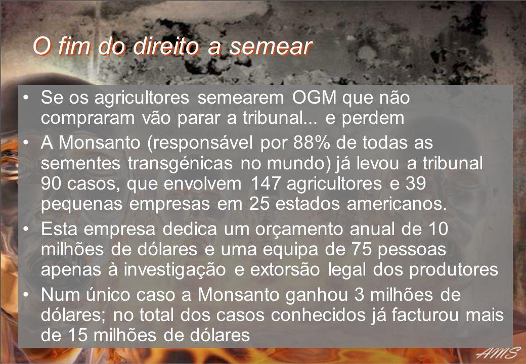 O fim do direito a semear Se os agricultores semearem OGM que não compraram vão parar a tribunal... e perdem A Monsanto (responsável por 88% de todas