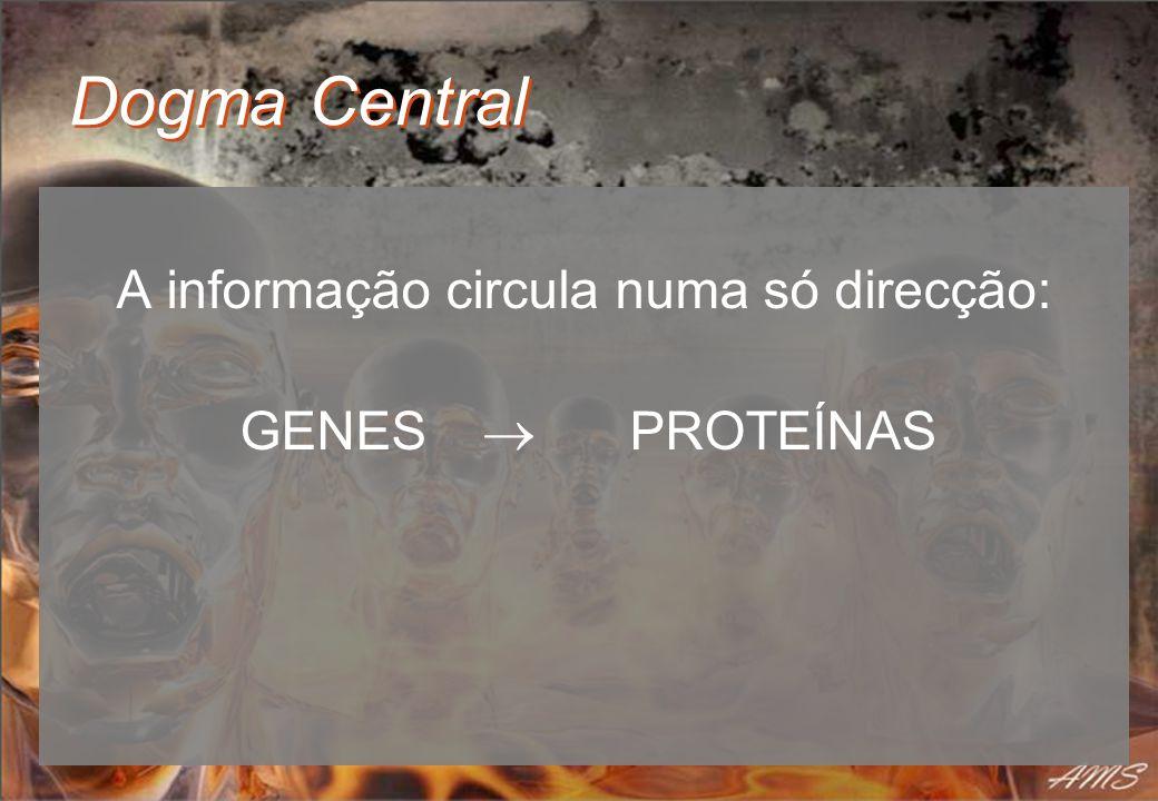 Dogma Central A informação circula numa só direcção: GENES PROTEÍNAS
