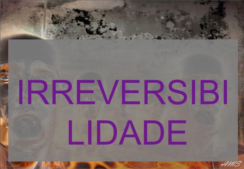IRREVERSIBI LIDADE