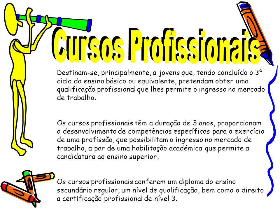 Destinam-se, principalmente, a jovens que, tendo concluído o 3º ciclo do ensino básico ou equivalente, pretendam obter uma qualificação profissional q