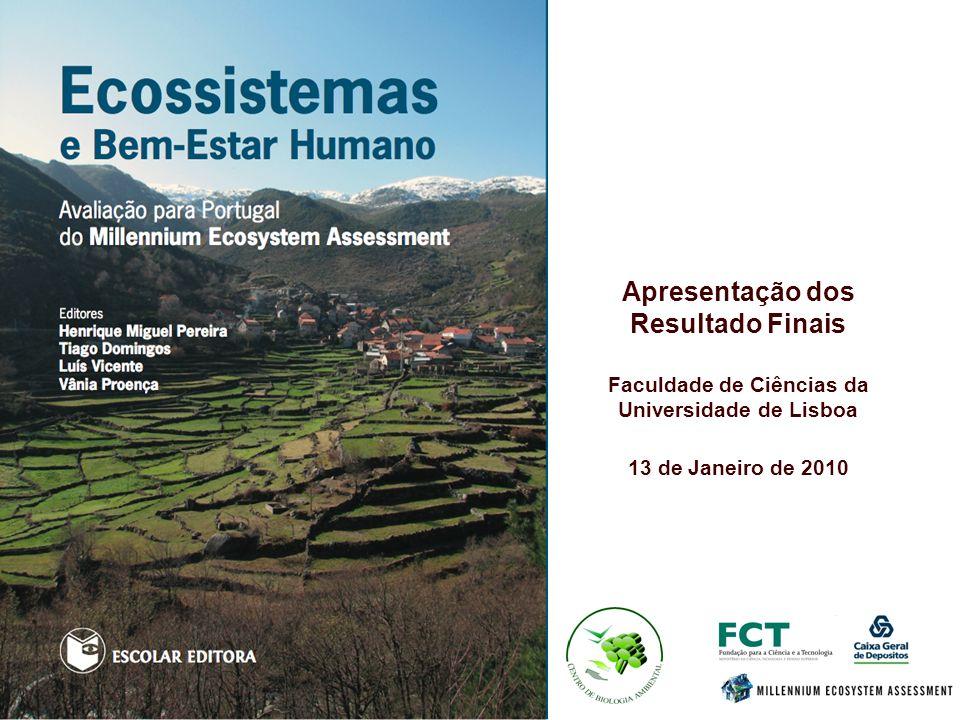 Apresentação dos Resultado Finais Faculdade de Ciências da Universidade de Lisboa 13 de Janeiro de 2010