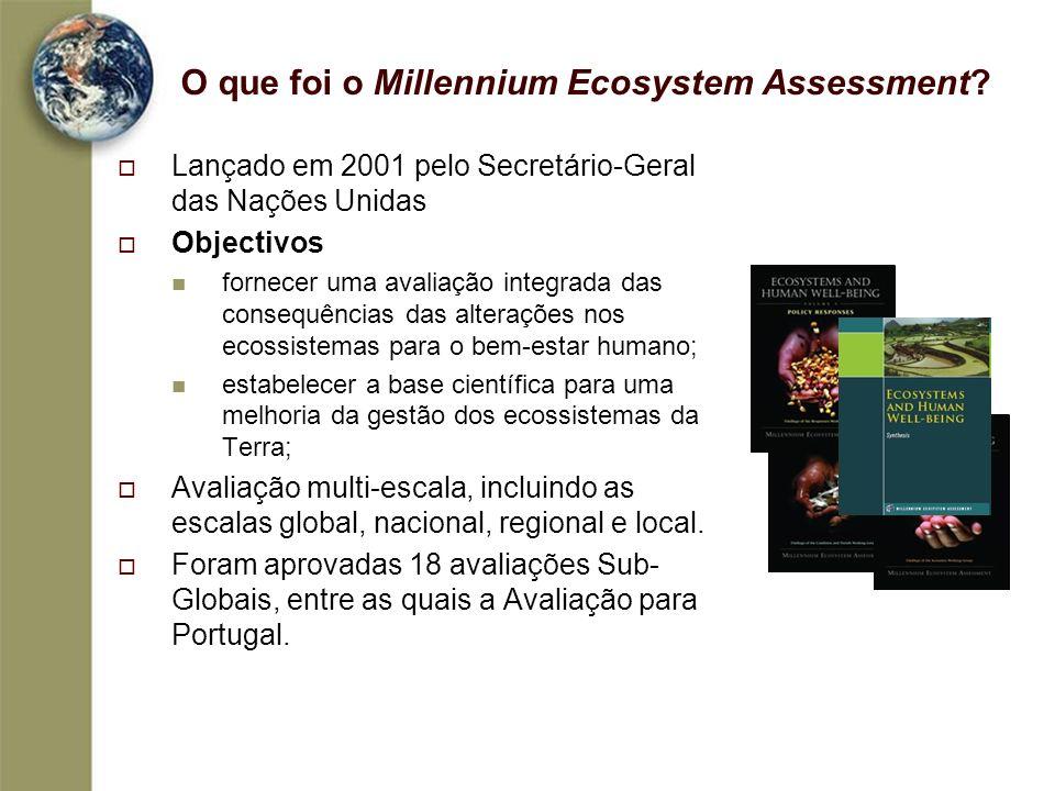 O que foi o Millennium Ecosystem Assessment? Lançado em 2001 pelo Secretário-Geral das Nações Unidas Objectivos fornecer uma avaliação integrada das c